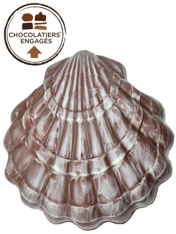Coquillage au chocolat au lait irisé blanc